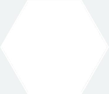 rovertjes_3-570x350